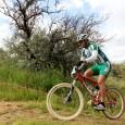 Aquí os dejamos las mejores imágenes de la carrera disputada en Archidona puntuable para el Circuito Diputación de Málaga y para el Open de Andalucía. Iremos actualizando el contenido. Recordad […]